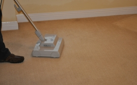 Sebo Duo Carpet Cleaning Agitator